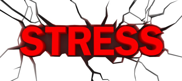 STRESS- YOUR ALLY OR FOE?- IS DETERMINED BY YOU!